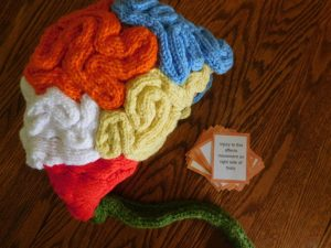 Brain Hat Knitting Pattern Free
